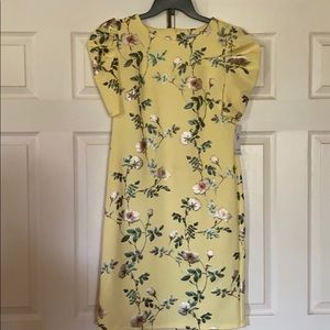 Brand new Shelby and Palmer floral print dress